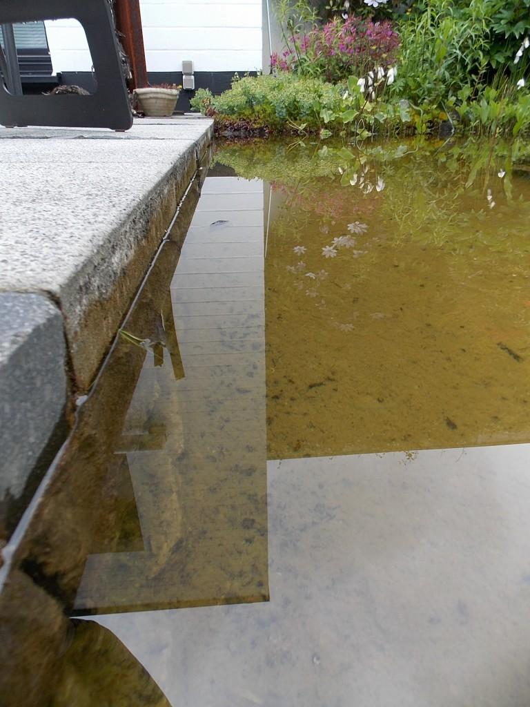 Terrassenanschluss mit maximalem Wasserstand.