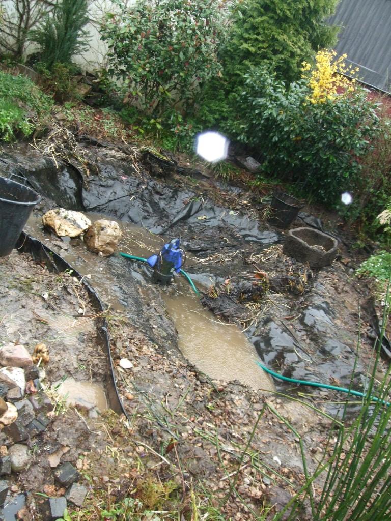 Freigelegte Folie , hier war das Verhältnis von 1m² Wasserfläche zu 0,5m³ Wasservolumen nicht eingehalten.