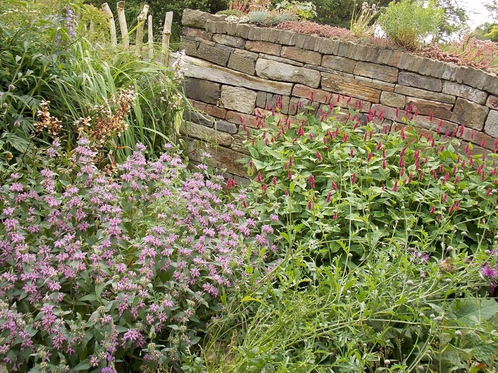 Hier erkennt man die Bepflanzung vor und auf der Mauer .